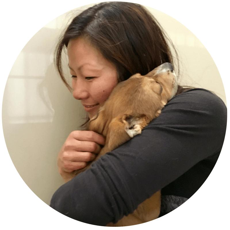 jen-rescue-puppy