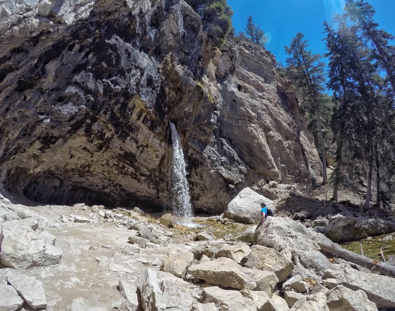 Sprouting Rock Colorado