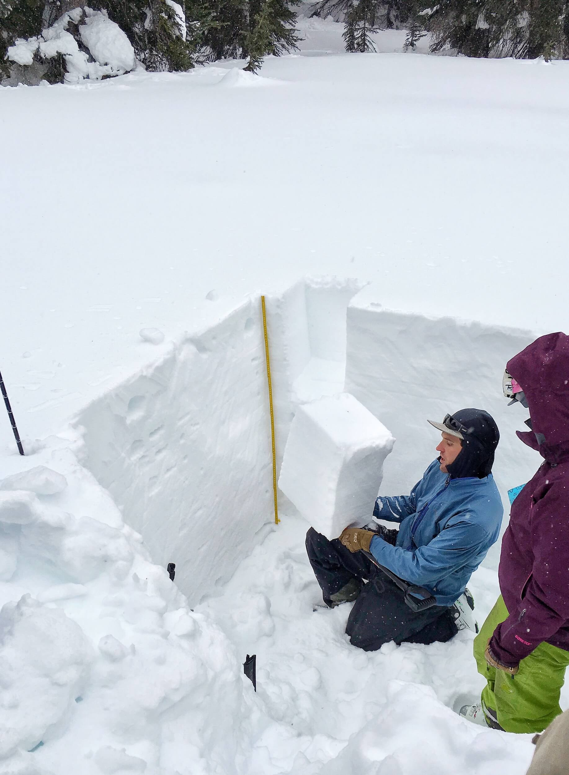 EXAMINING THE SNOW PACK