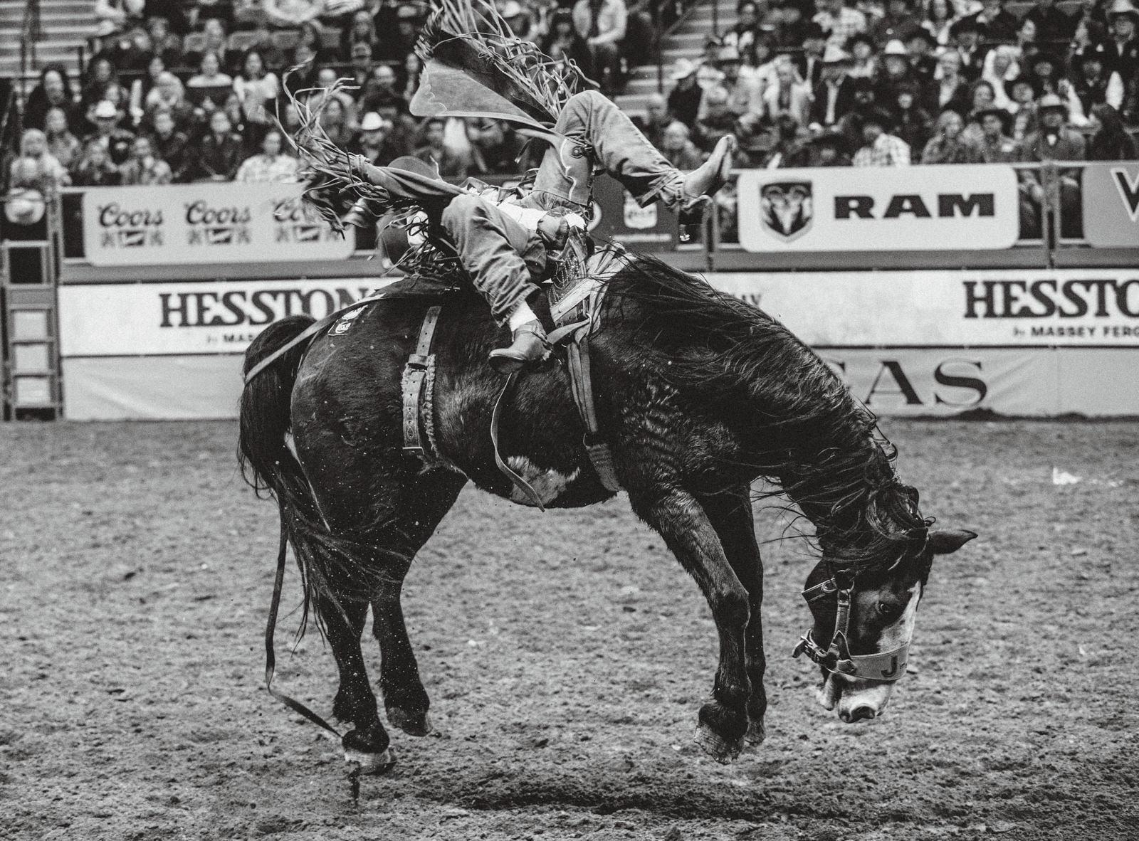 20161201_WNFR_Rodeo-0628.jpg