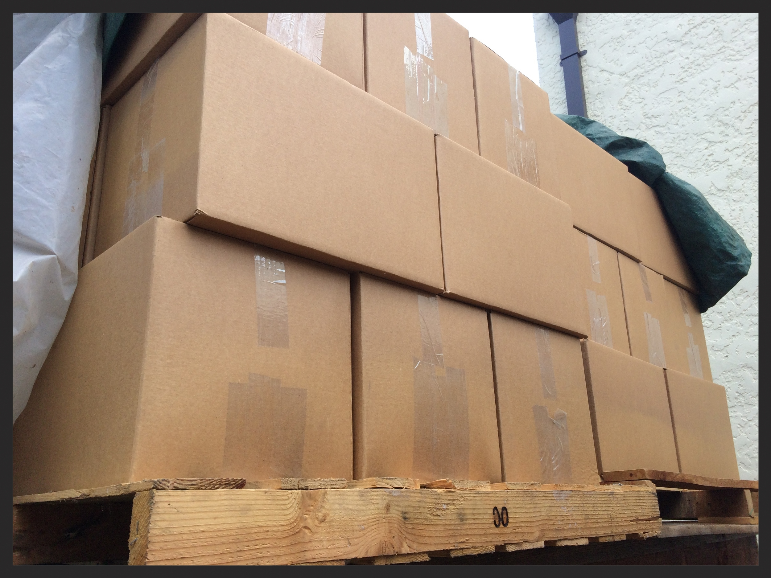 Boxes of books.JPG
