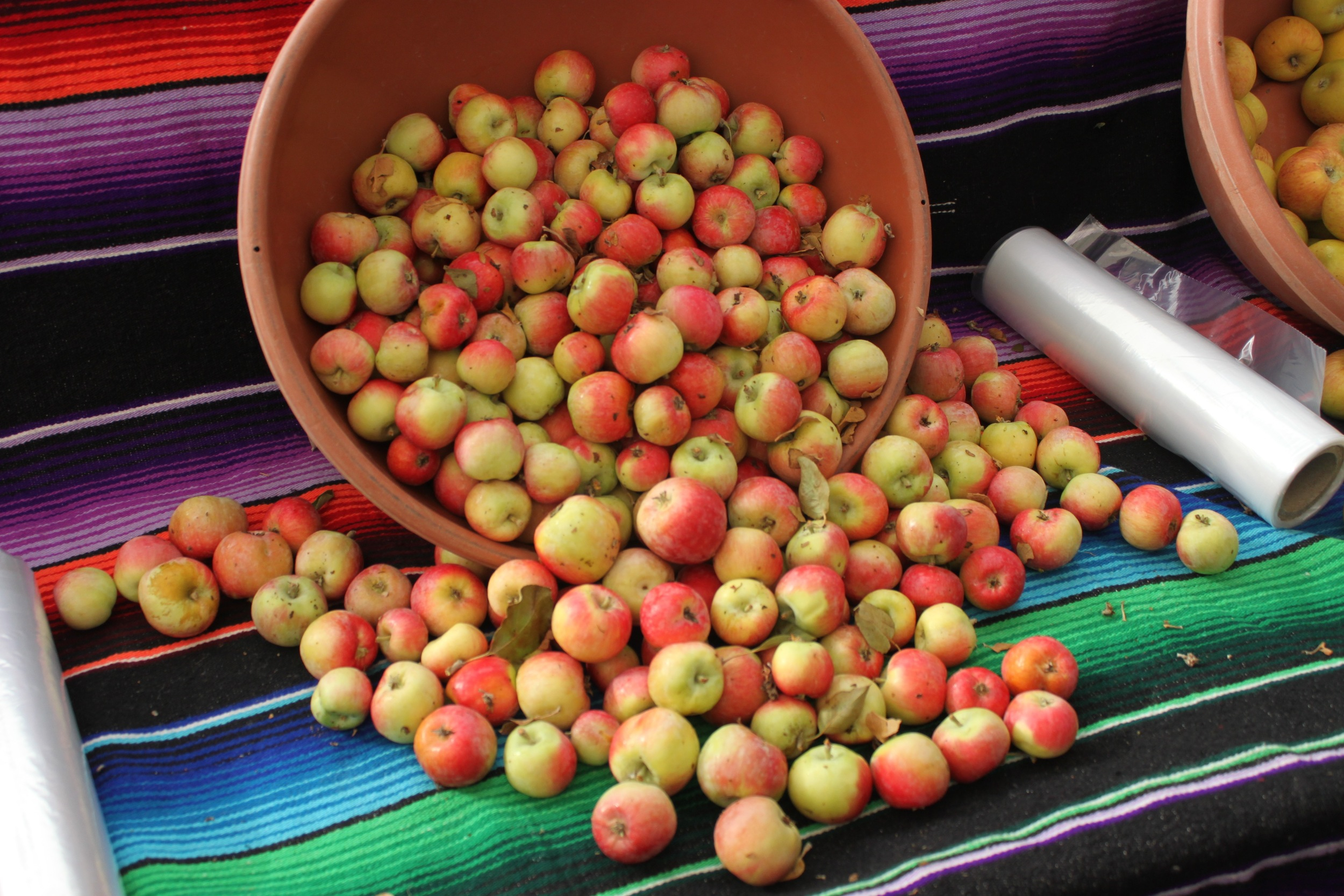 CRAB APPLES FROM THE FARMERS MARKET