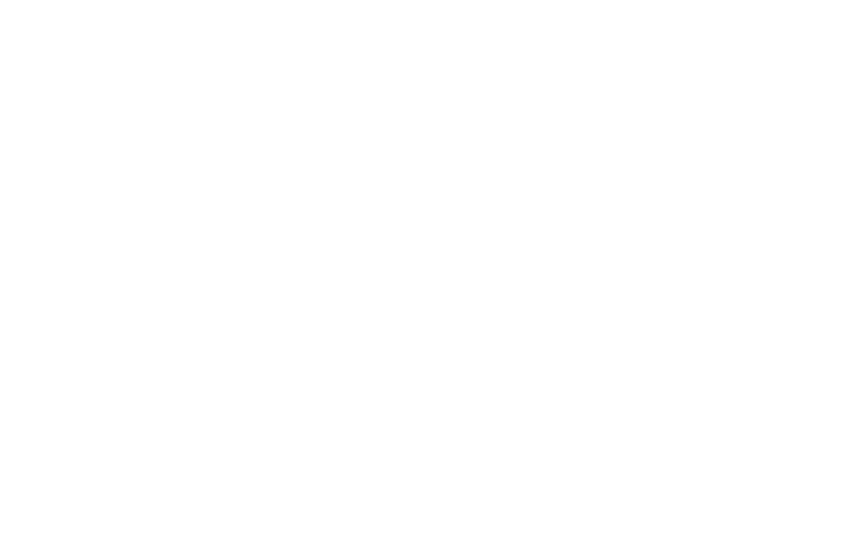 OFFICIAL SELECTION - Web Fest New York 2017 - History Web Series.png
