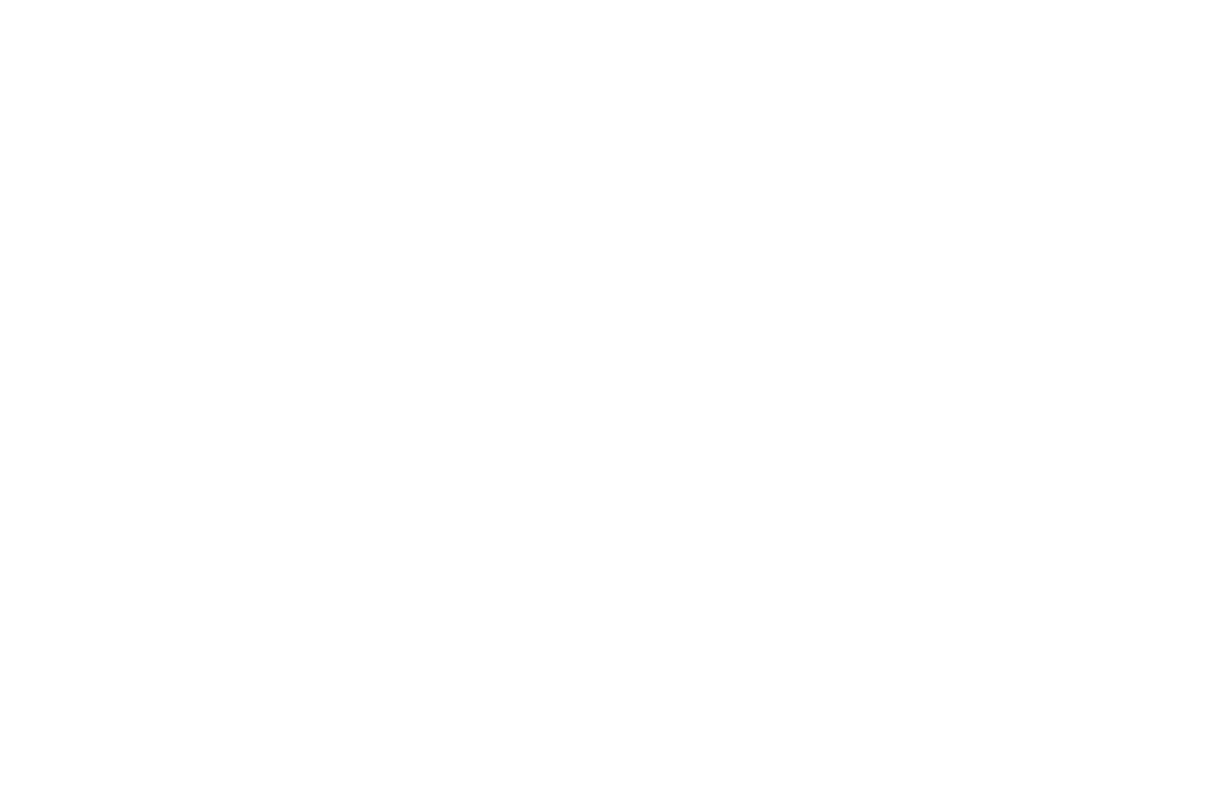 OFFICIAL SELECTION - Web Series Festival Global 2017 - History Web Series.png