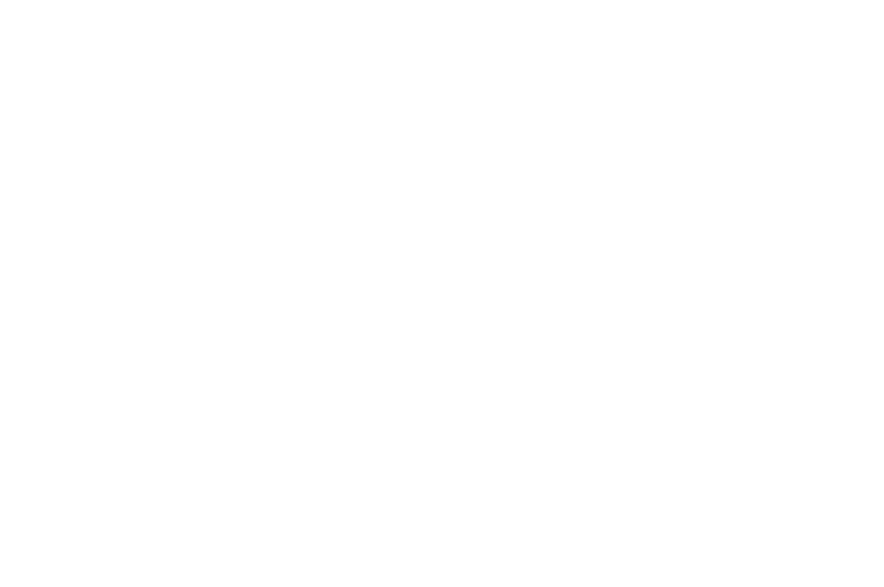 OFFICIAL SELECTION - TeaDance Gay  Lesbian Film Festival 2017 - Void.png