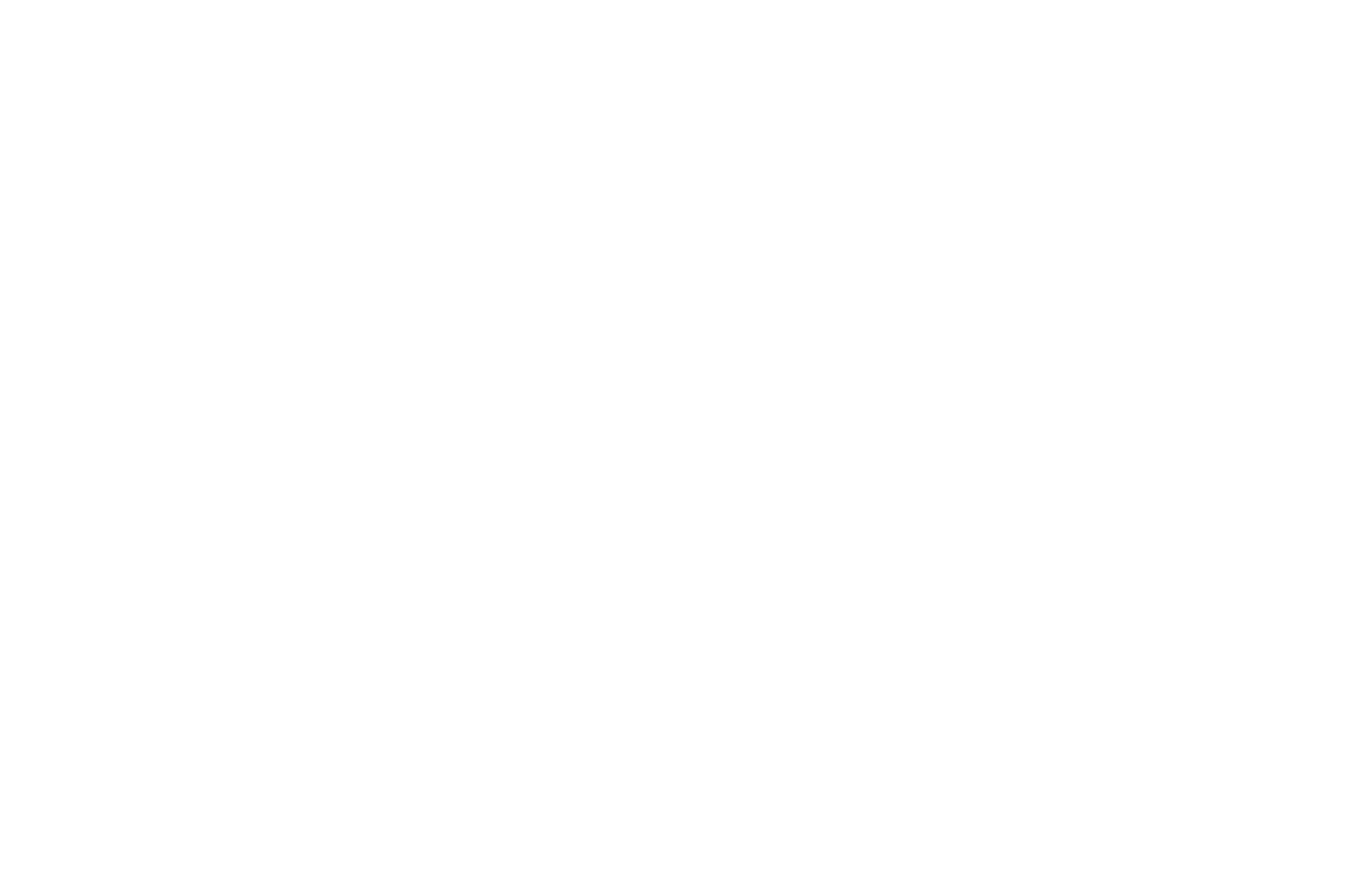 OFFICIAL SELECTION - New Hope Film Festival 2017 - Letting Go.png