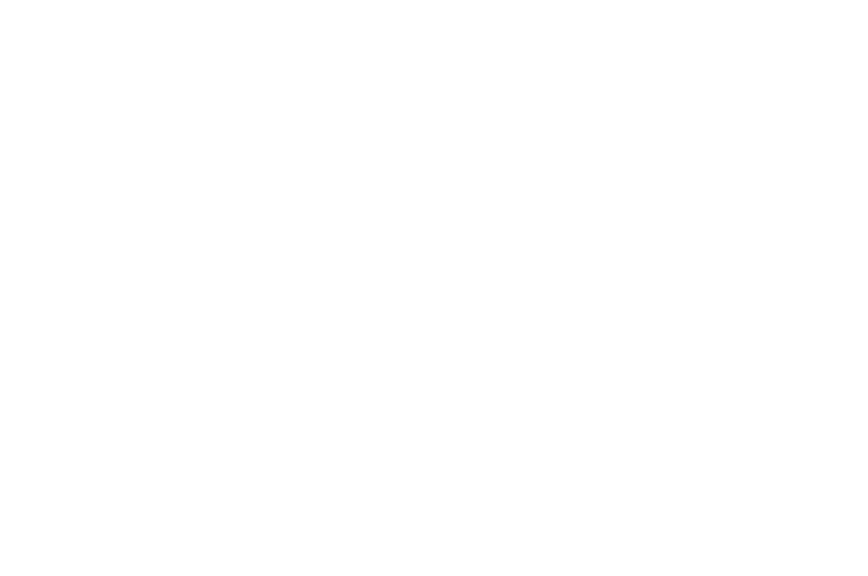 OFFICIAL SELECTION - NewFilmmakers New York 2017 - Letting Go.png