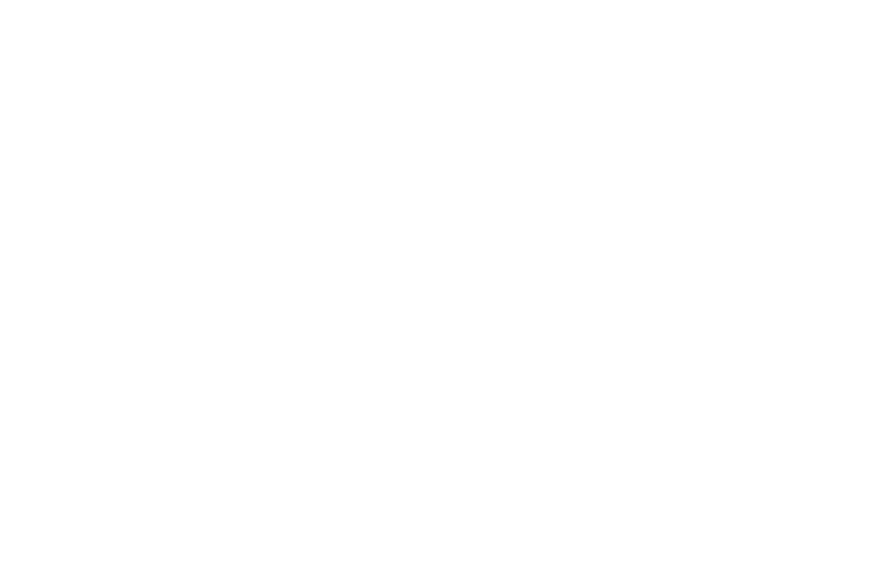 OFFICIAL SELECTION - Atlantic Ave Film Festival 2017 - Letting Go.png