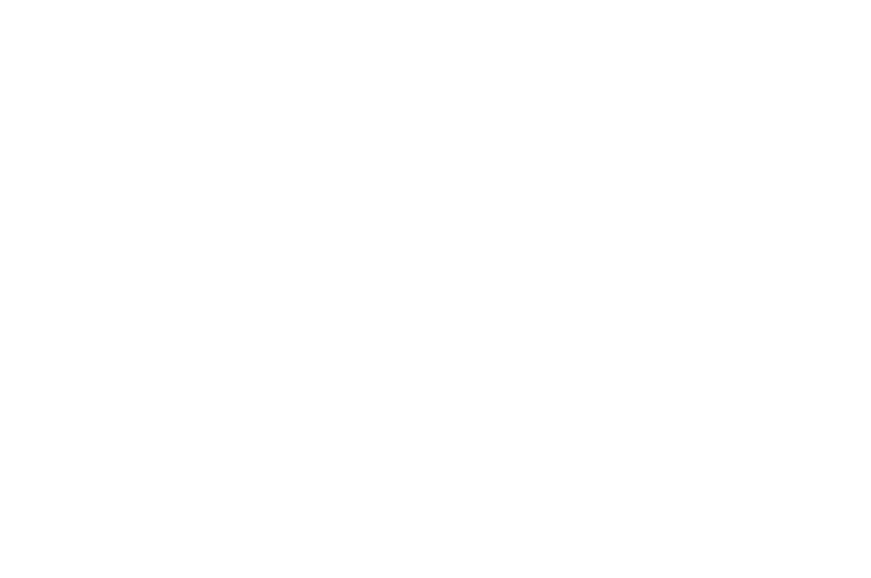 BEST TELEVISION PILOT - Honolulu Film Awards 2017 - Void.png