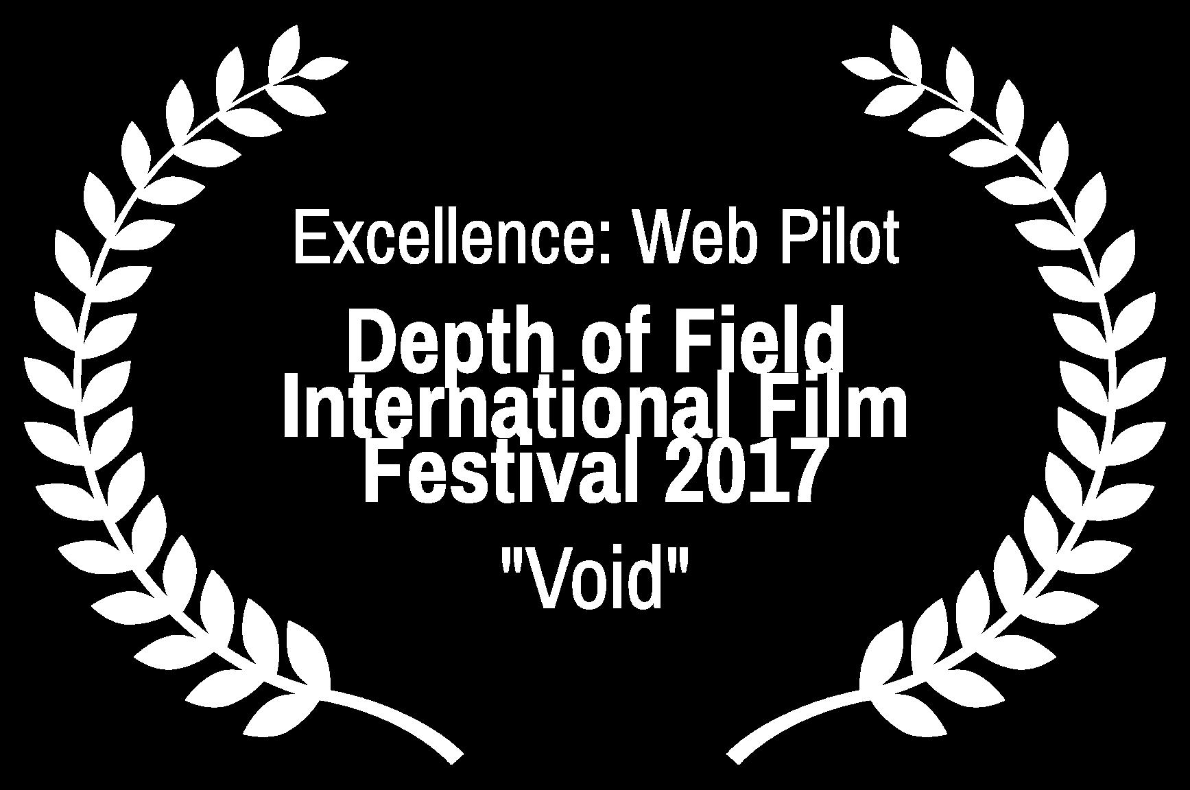 Excellence Web Pilot - Depth of Field International Film Festival 2017 - Void.png