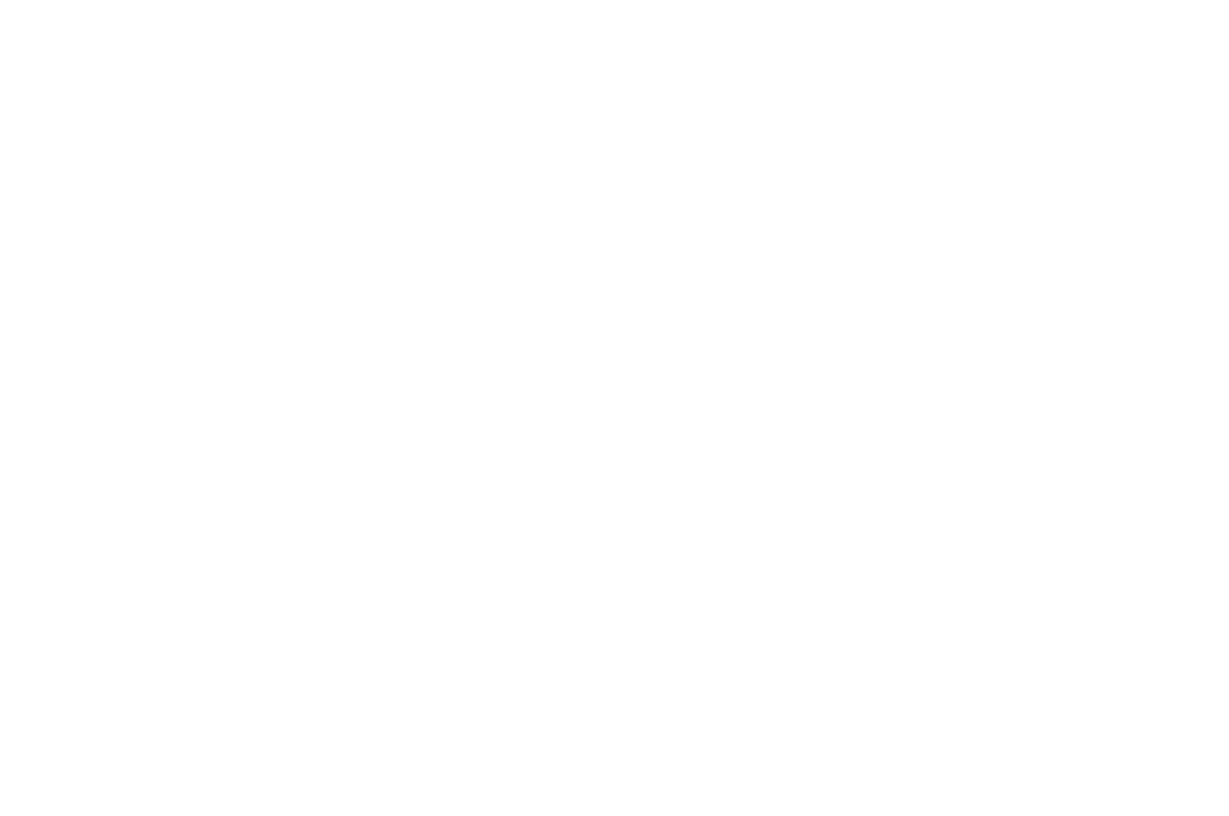 OFFICIAL SELECTION - Direct Monthly Online Film Festival 2017 - History Season 2.png