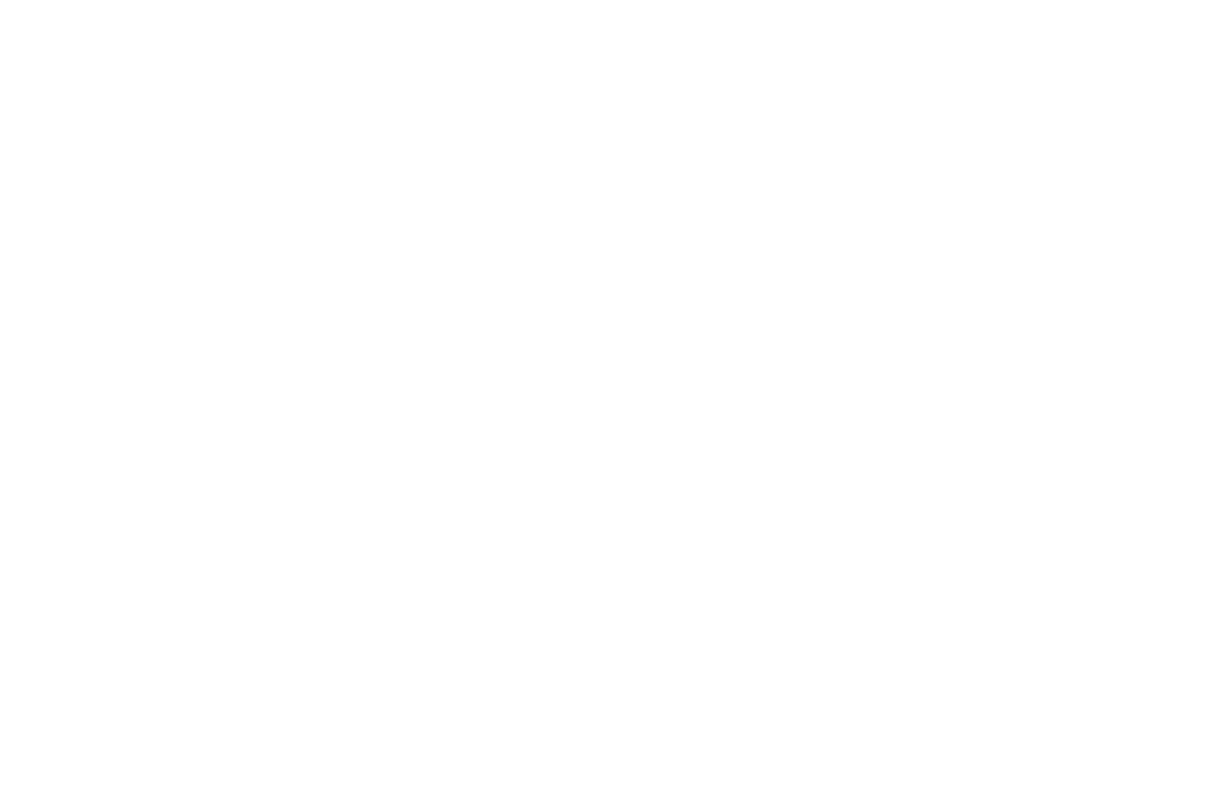 OFFICIAL SELECTION - Direct Monthly Online Film Festival 2017 - Worth It.png