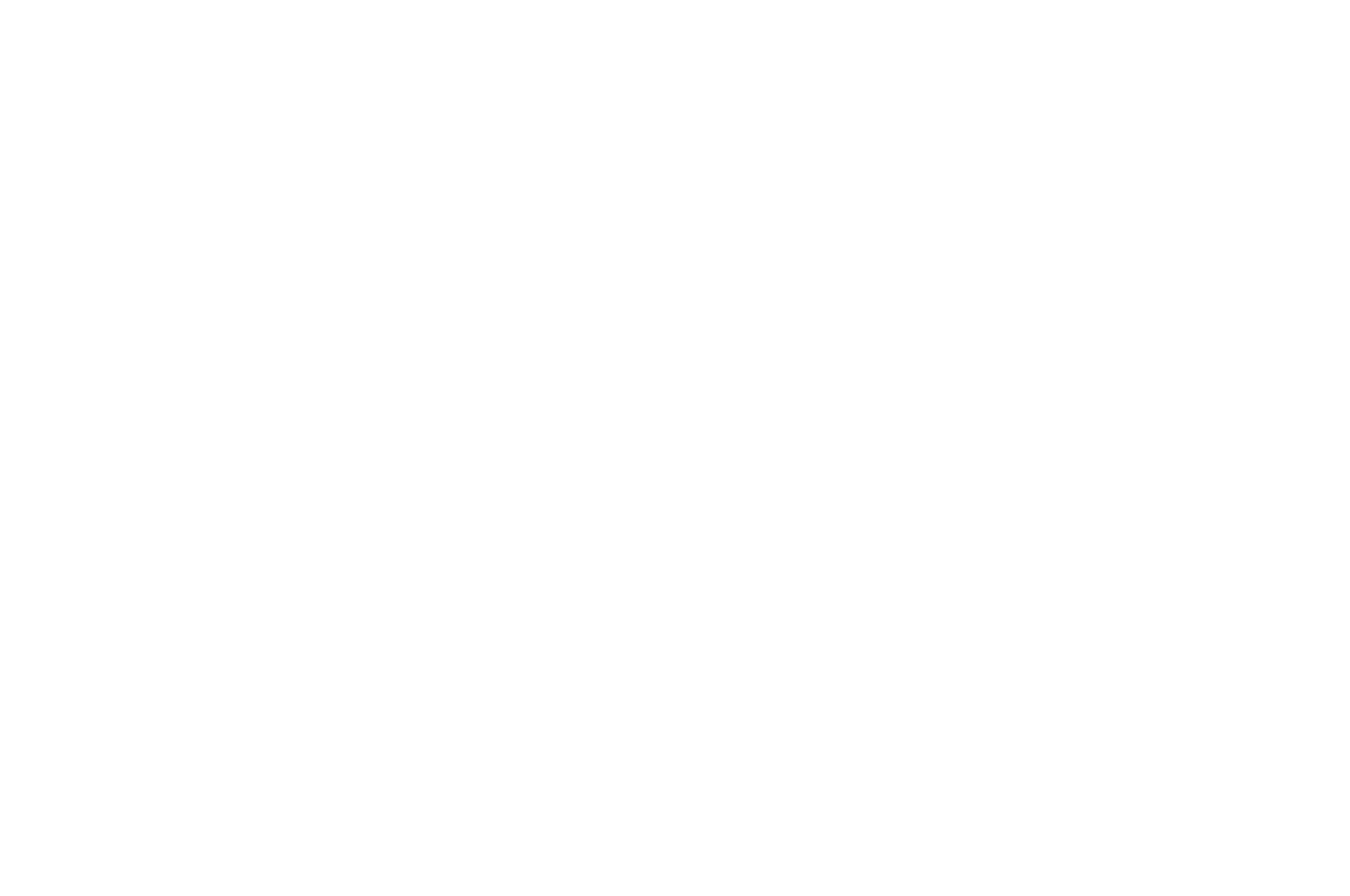 OFFICIAL SELECTION - New York Film Awards 2017 - Worth It.png