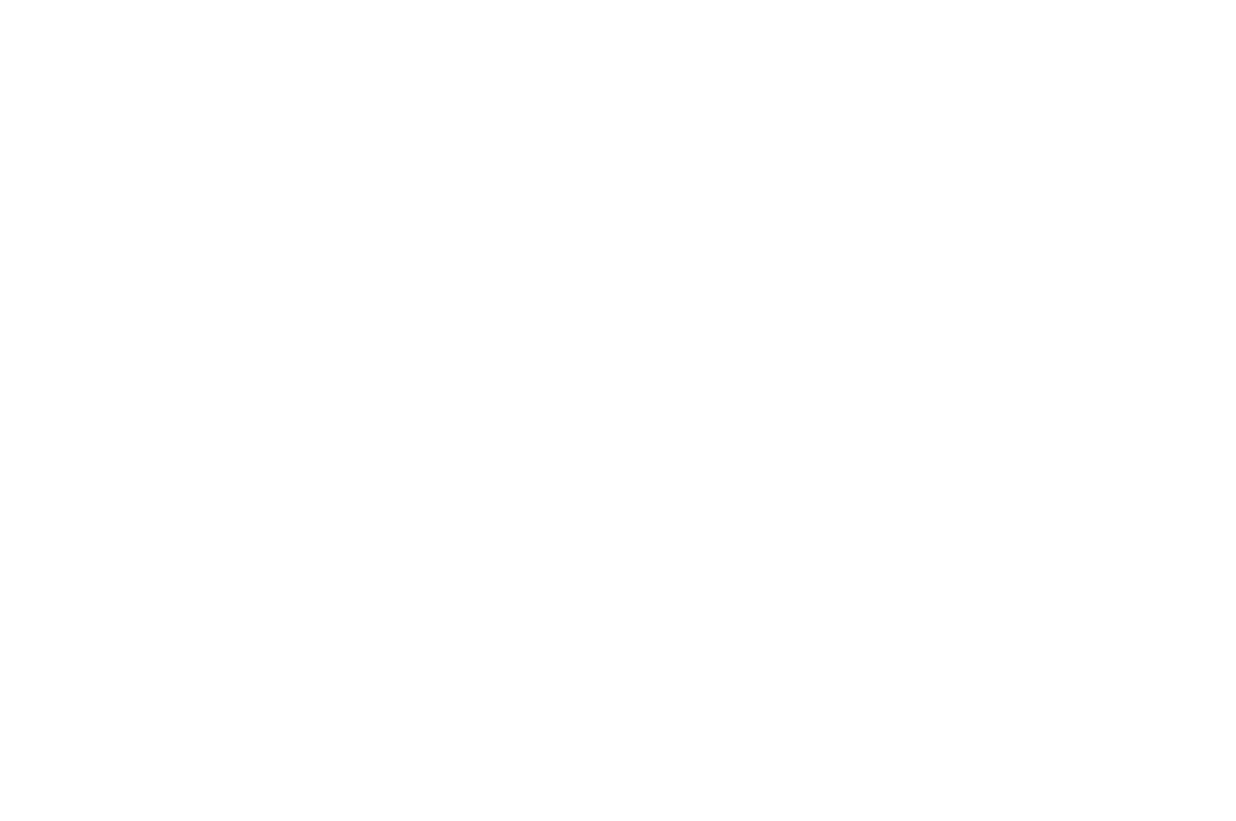 OFFICIAL SELECTION - Direct Monthly Online Film Festival - 2018.png