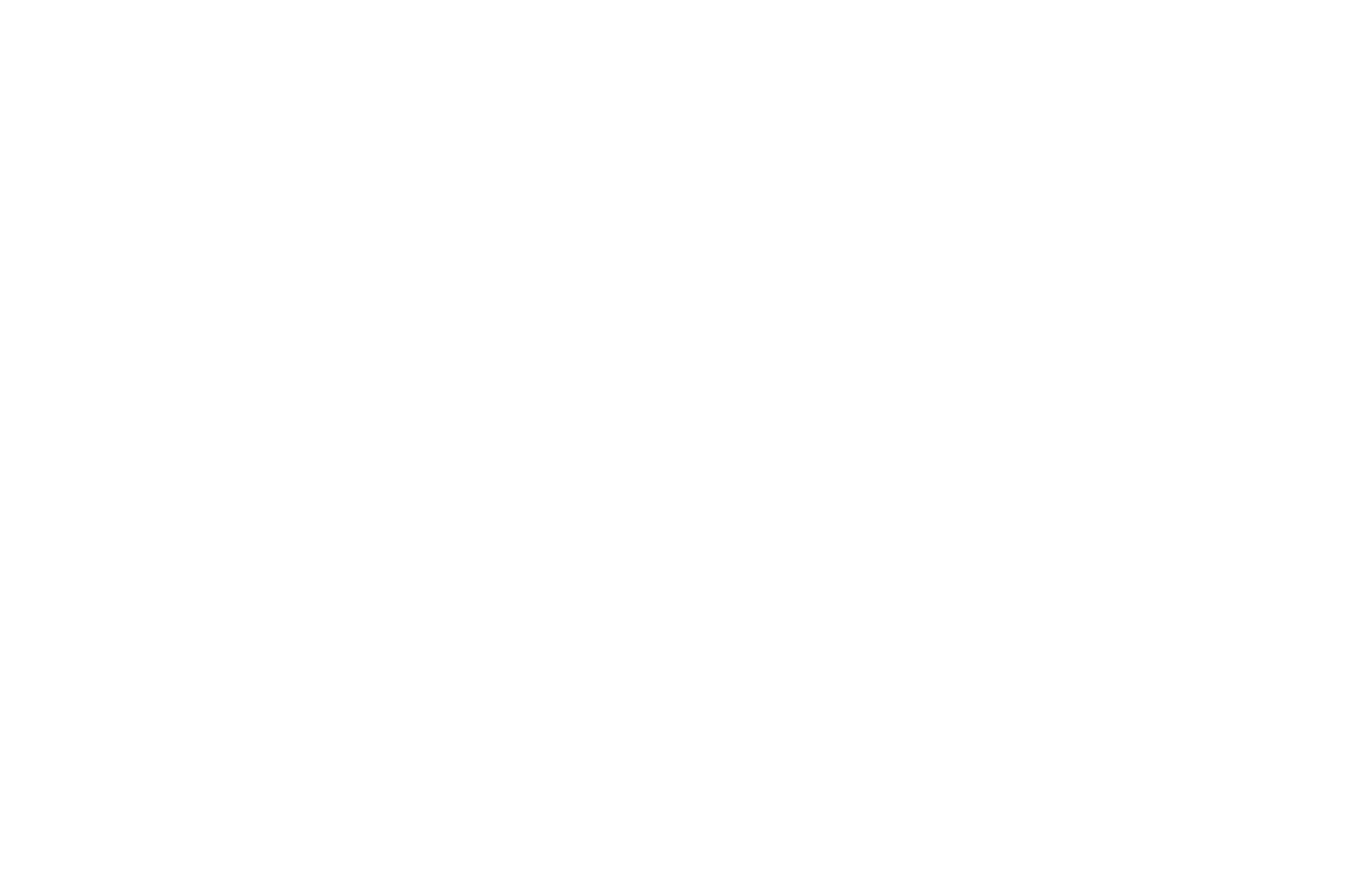 OFFICIAL SELECTION - Los Angeles CineFest - 2018 (1).png