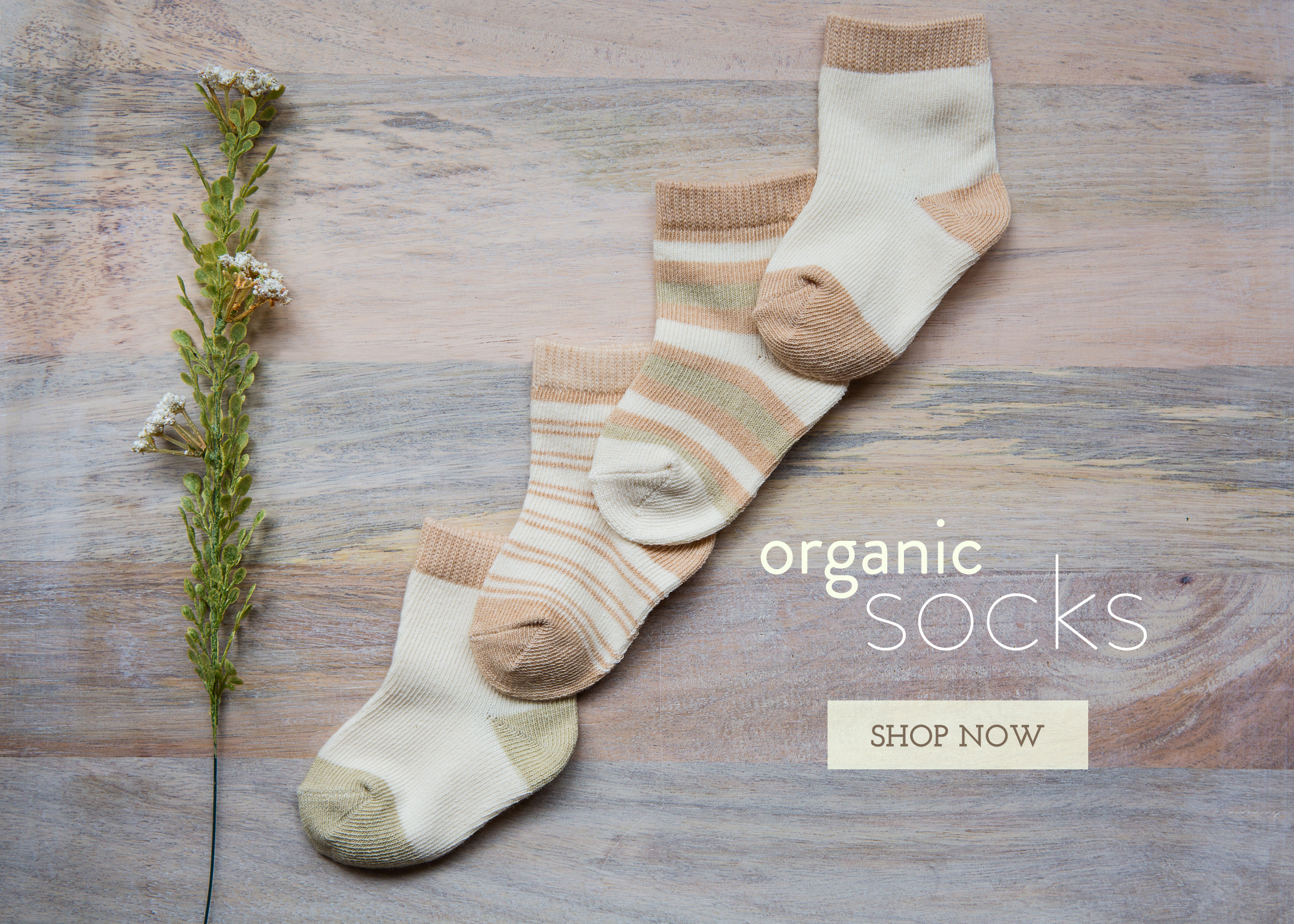 organic-socks.jpg
