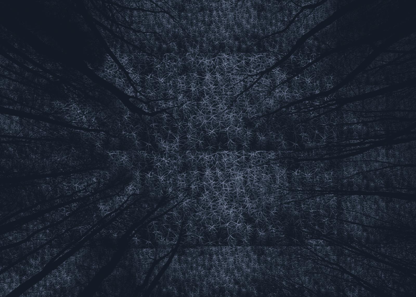 Skirrid Project 18.02.11_7710.jpg