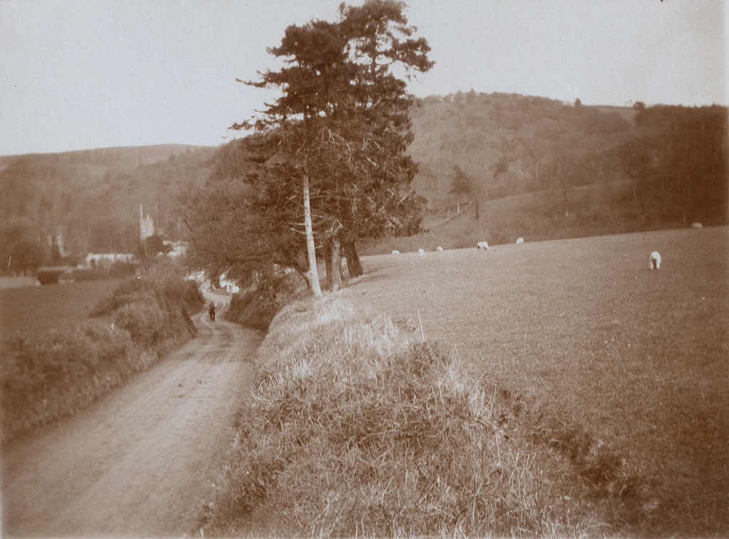 The Quantocks, Crowcombe.jpg