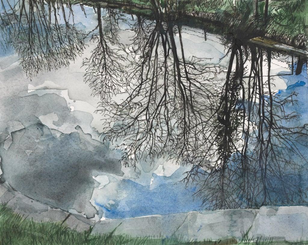 Trees Reflected at Lock 24