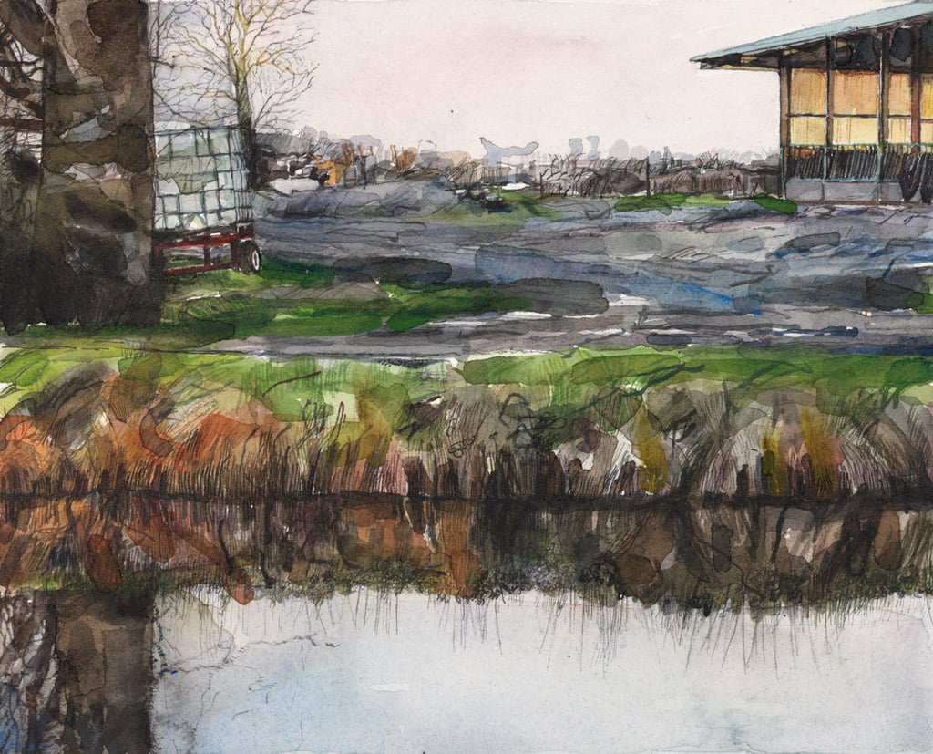 Maher's Cowshed on the Banks of the Royal Canal