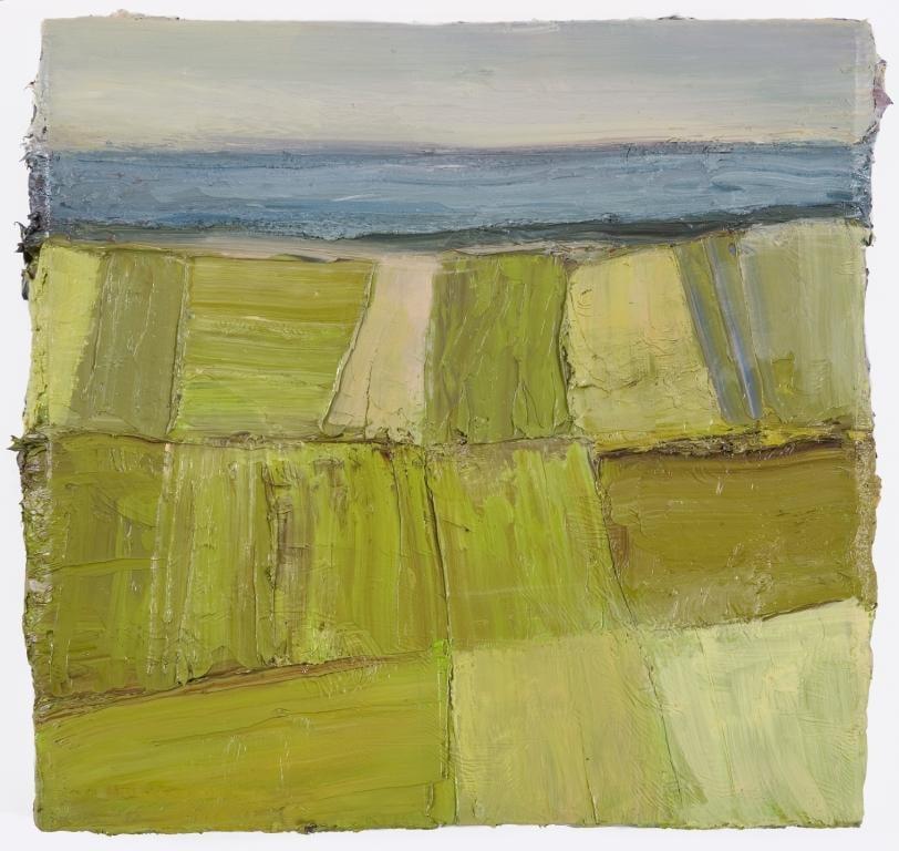 Sea Fields X