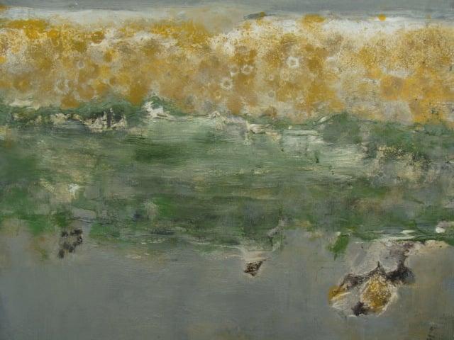 Lichen iv