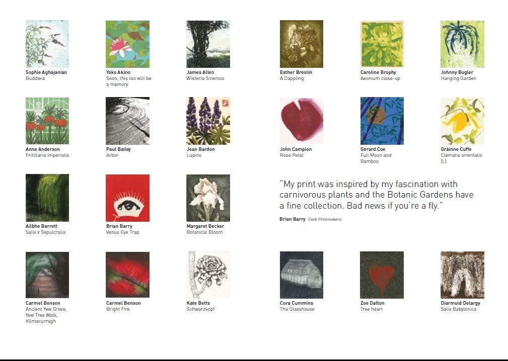 Catalogue 5