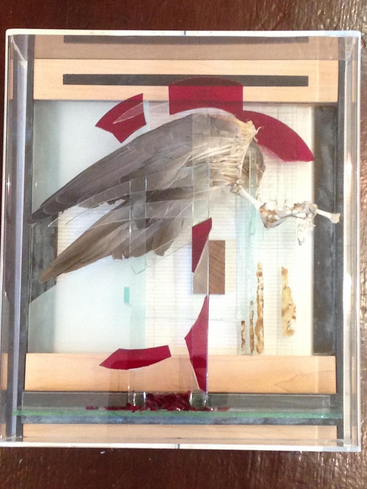 Glass Bird I