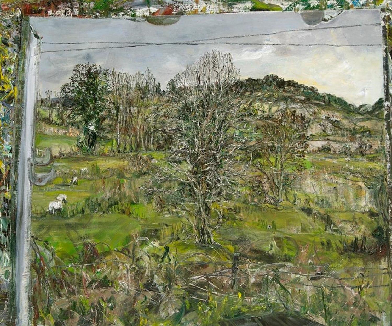 Whitethorn, field