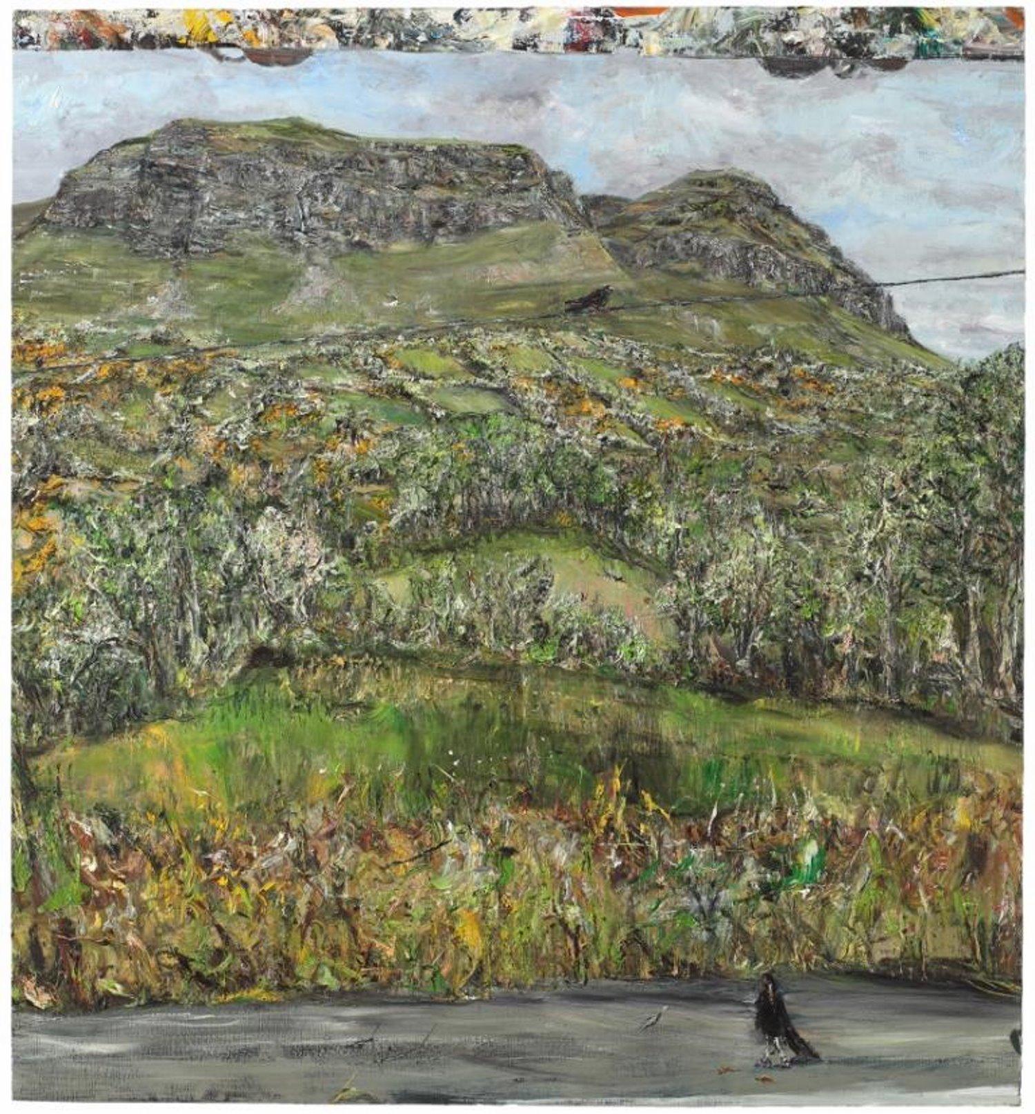Benbulben crags with birds