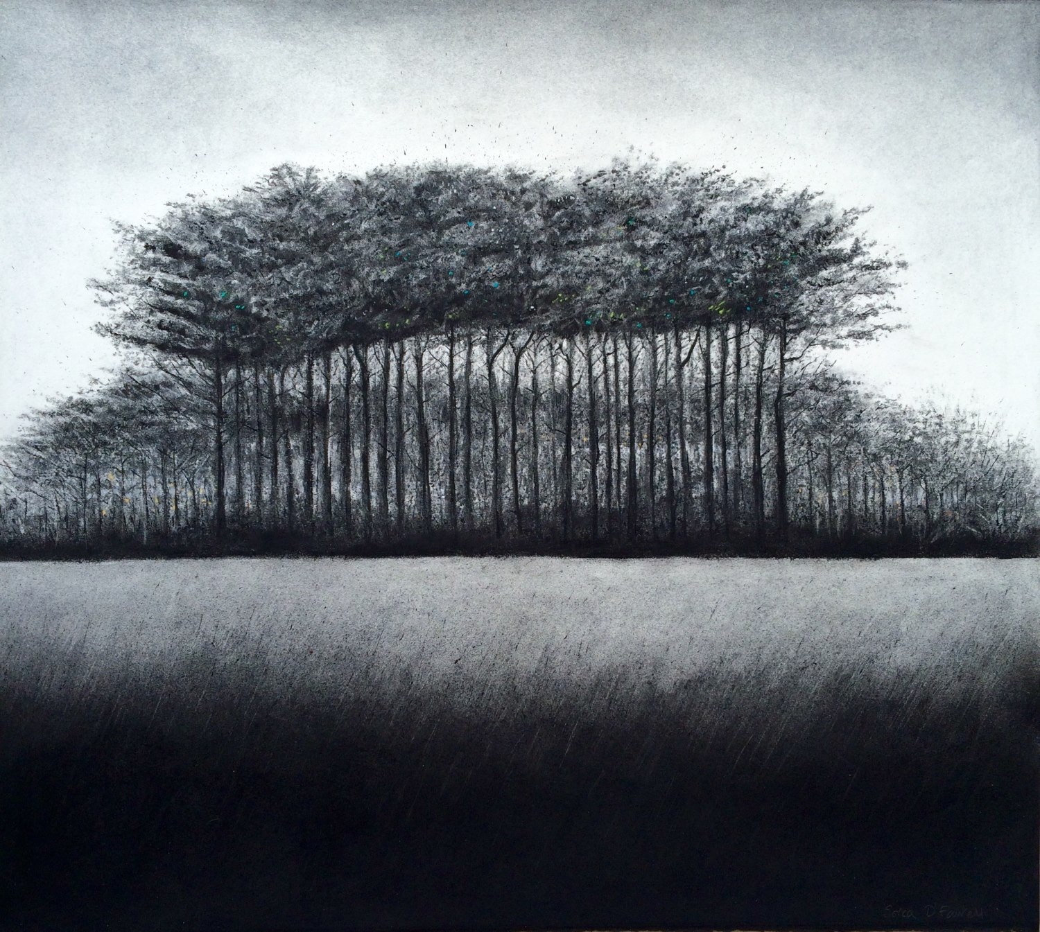 The Group charcoal & Indian ink on fabriano paper 56cm x 58cmby Sorca O'Farrell
