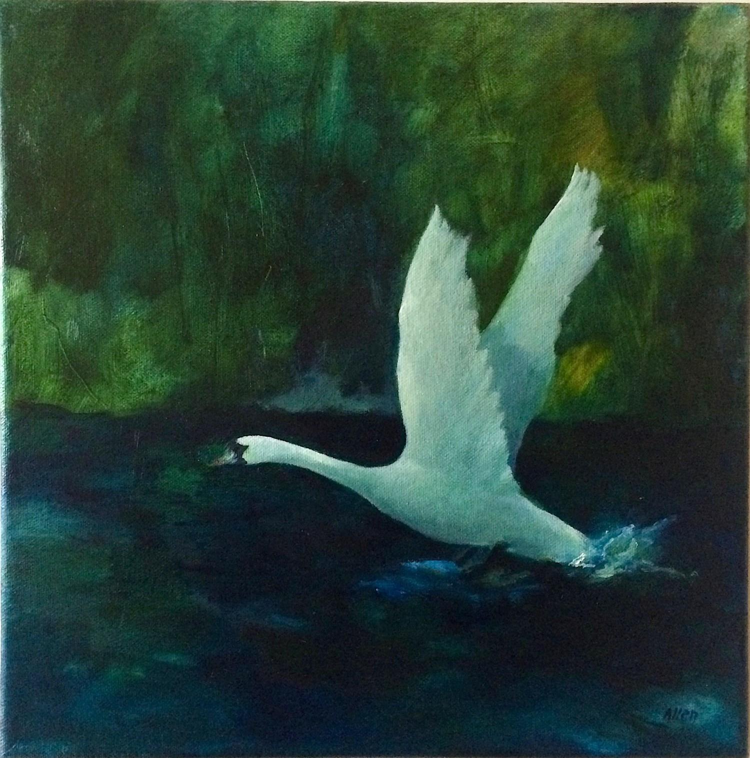 ..wings half spread for flight