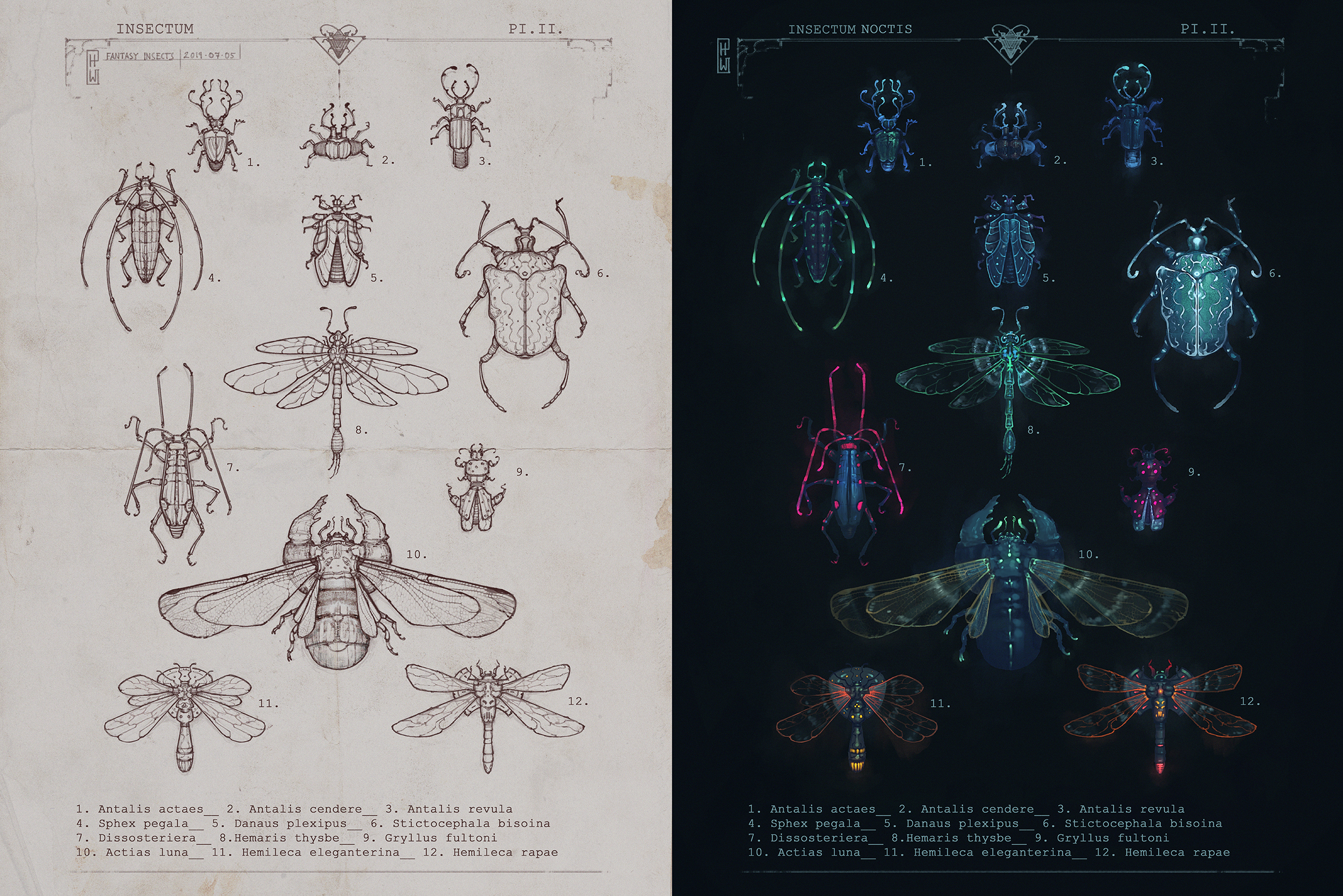 Insects_07_Fantasy1.jpg