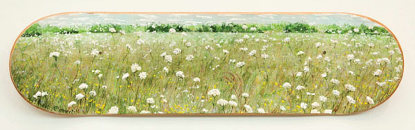 """36. Robert Clements, """"Southeast Clarke Skate Park Meadow of Queen Anne's Lace"""" $500"""