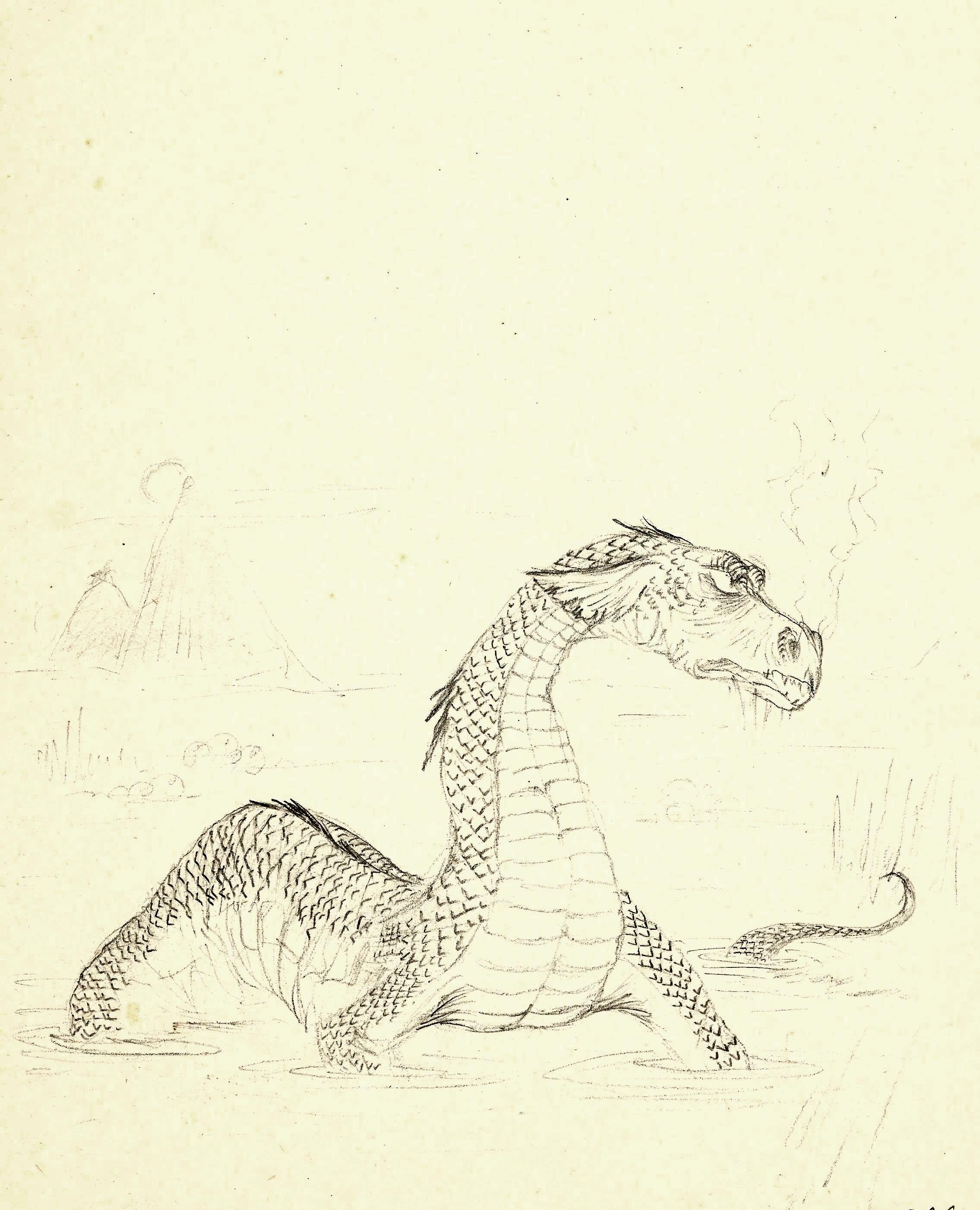 dragon aqueux.jpg