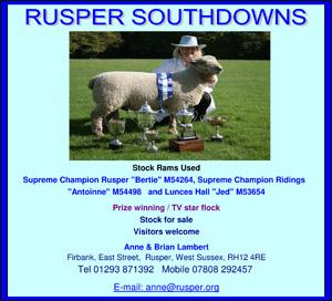 Rusper-Flock.jpg
