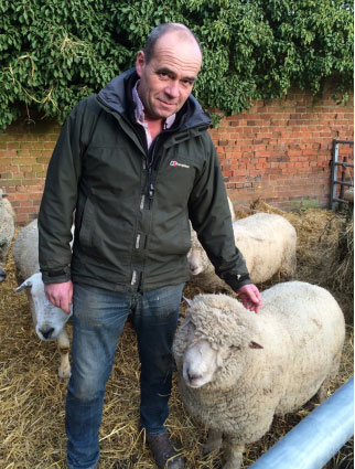 Andrew Hudson sees a good future for the Southdown breed.