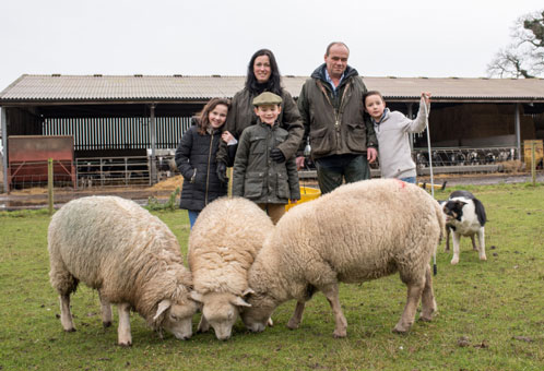 A family affair – Andrew and Claire's children get involved in running the flock.