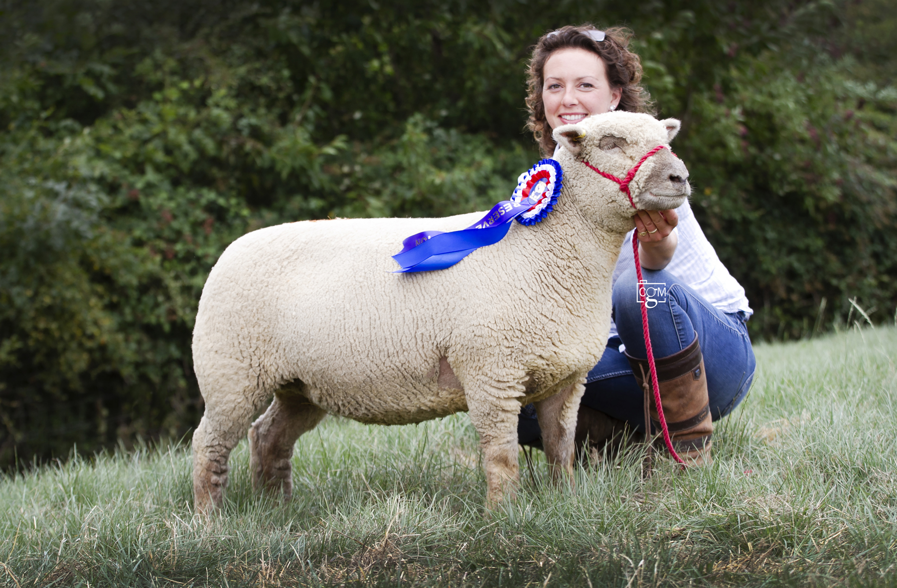 Selling for 480gns was the female and reserve overall champion, a shearling ewe from E Sargent, East Sussex.