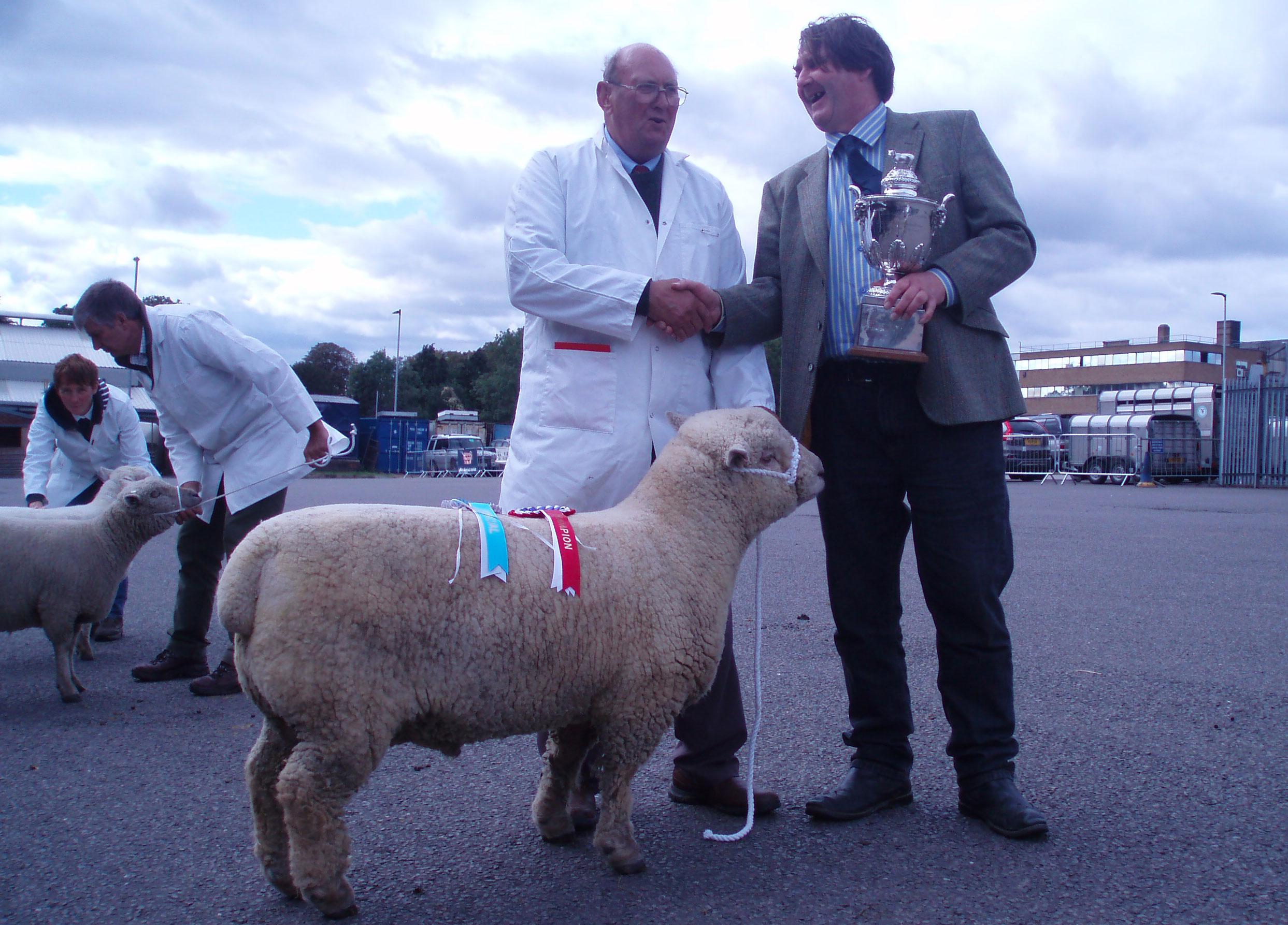 Melton Mowbray Show Champion ; de Pibrac 'Teddy' 17/00231, bred by Mr Nigel Barrington-Fuller, shown by Mr Jim Cresswell.