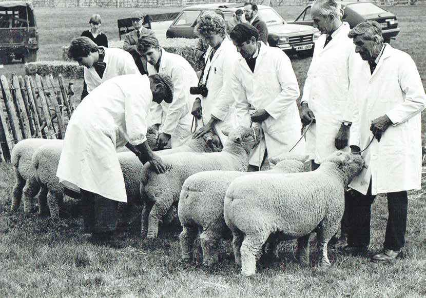 Frank Grantham judging at Findon Fair in the early 1980s
