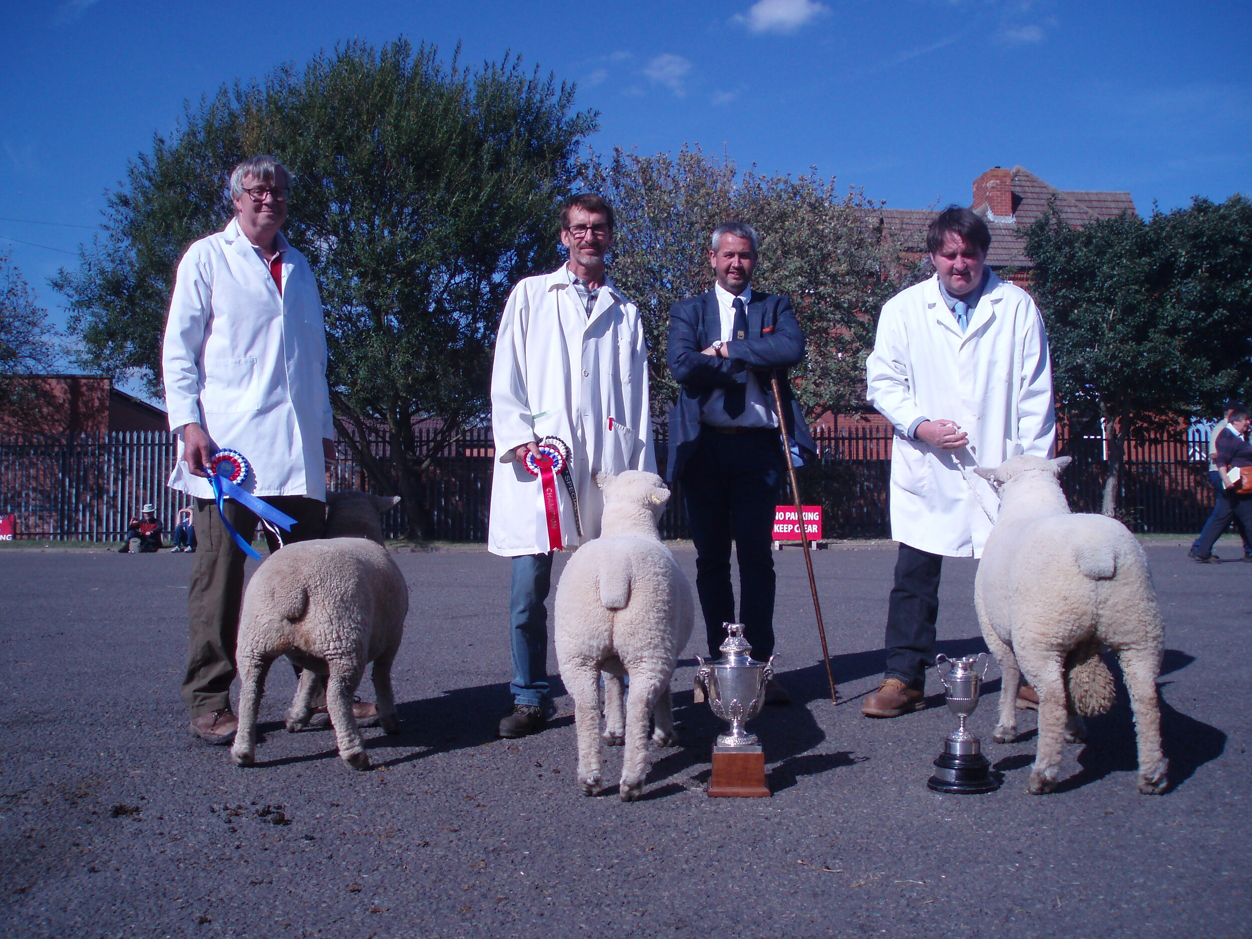 Judge Jonathan Long with the champions: left to right: P Goldsworthy's shearling ewe, D, S & P Humphrey's shearling ewe and shearling ram.