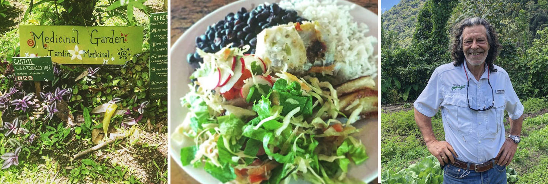 maja sereda artist retreat banner food