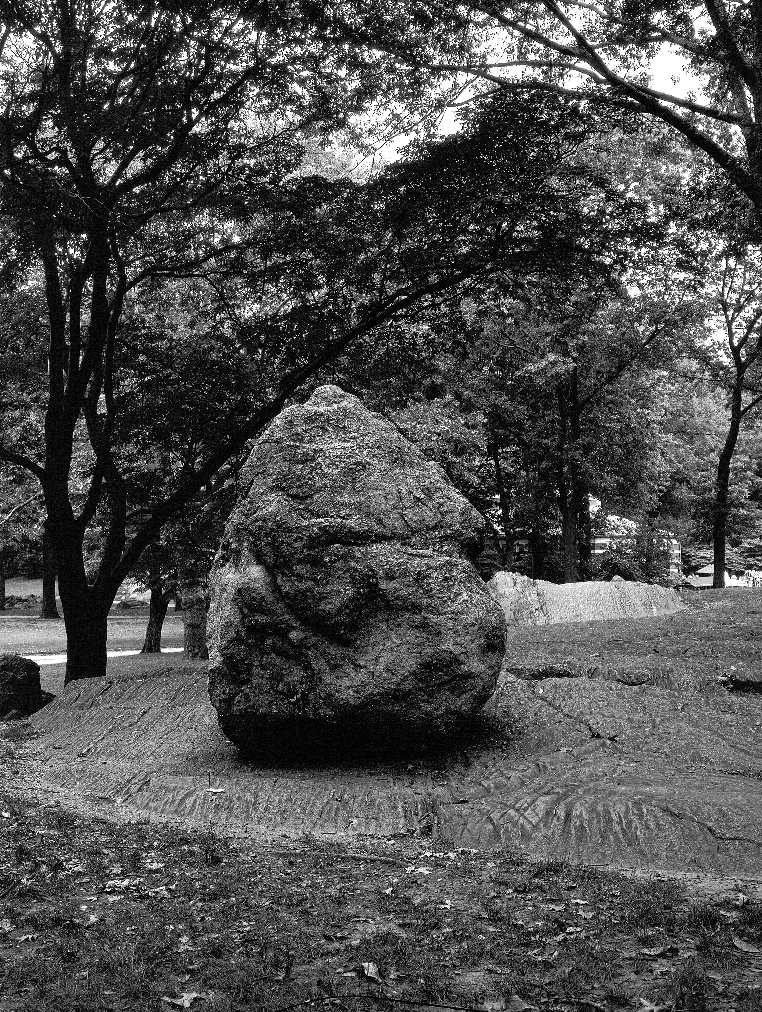 A rock at Central Park New York 2000.jpg