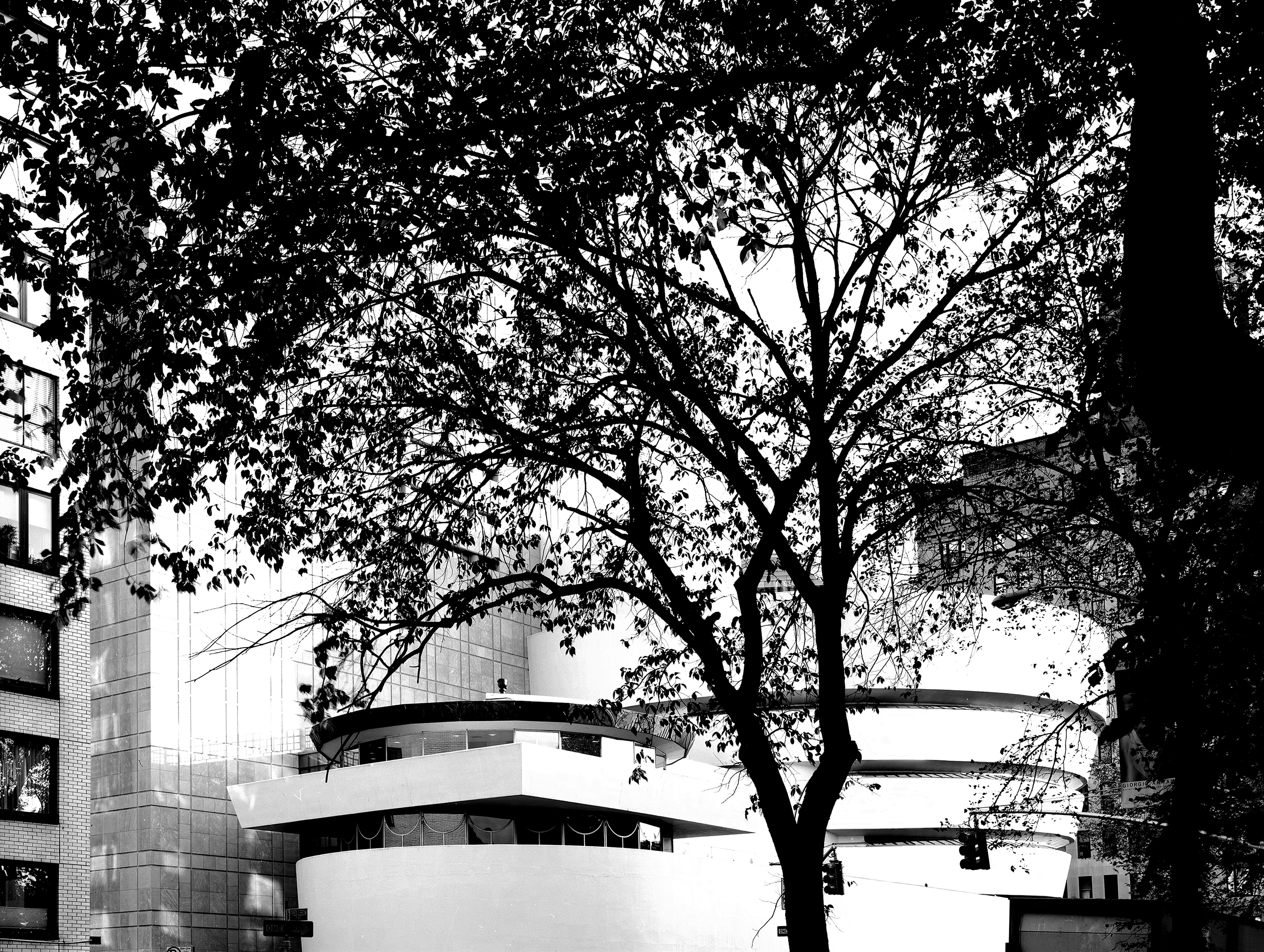 S.R. Guggenheim Museum from 5th Av 2000.jpg