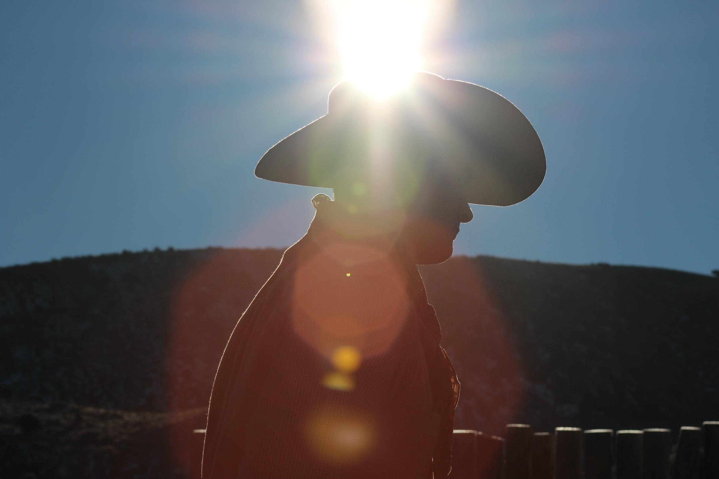 Zeph good one sunflare.jpg