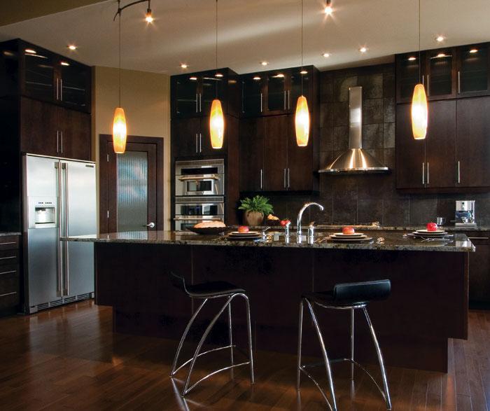 modern_kitchen_cabinets_in_espresso_finish.jpg