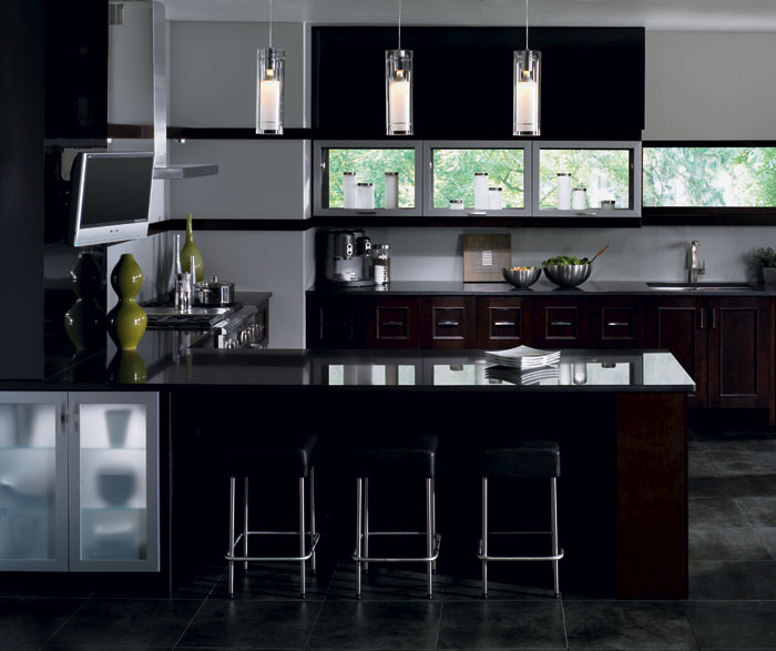 contemporary_kitchen_cabinets_in_espresso_finish.jpg
