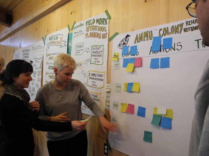 cohost-strategic planning.jpg