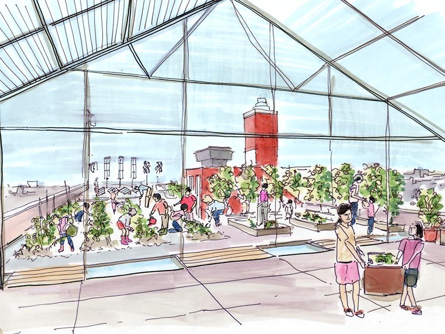 P.S. 10 Roof Garden